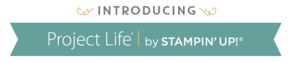Project Life Banner