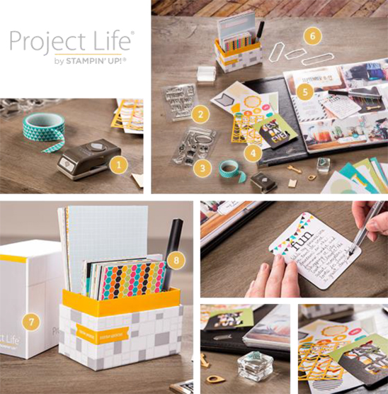 Project Life Introductory Products