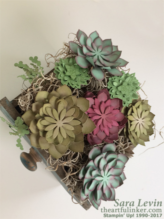 Succulent Garden Drawer - detailed view - from theartfulinker.com