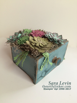 Succulent Garden Drawer from theartfulinker.com