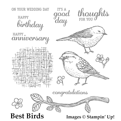 Best Birds stamp set. Item 141525 from Stampin' Up! rubberstamps, cardmaking, rubberstamping, handmade cards, stampinup, saralevin, theartfulinker, http://bit.ly/ShopwithSara