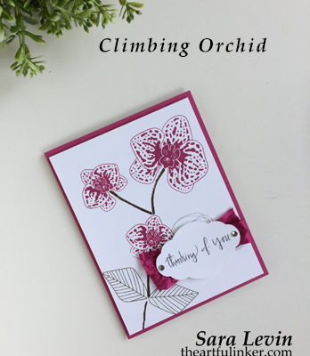 Climbing Orchid in Berry Burst card from theartfulinker.com
