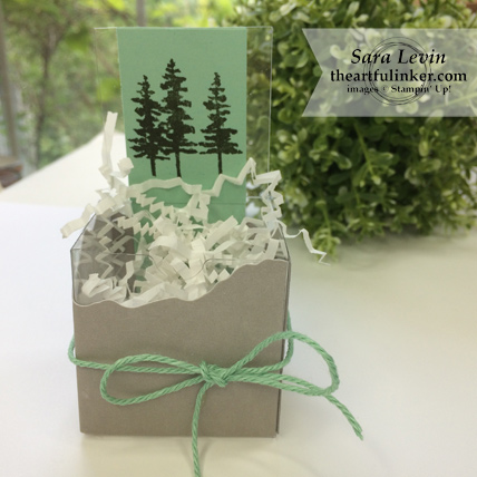 A paper Pumpkin Thing Blog Hop Manly Moments May 2018 favor for him from theartfulinker.com