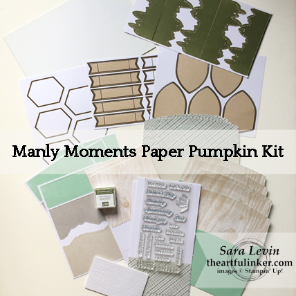 Manly Moments Paper Pumpkin Kit May 2018 - kit contents - from theartfulinker.com