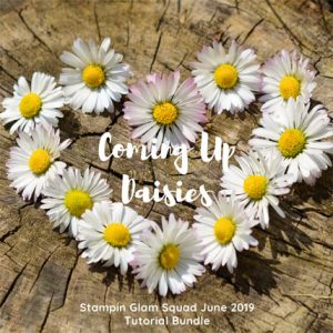 Stampin Glam Squad June 2019 Tutorial Bundle Coming Up Daisies. Shop for Stampin Up products at theartfulinker.com
