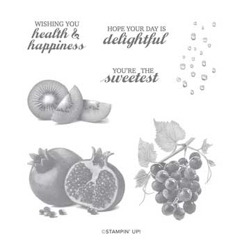 Slice of Happiness stamp set. Shop for Stampin Up products at theartfulinker.com