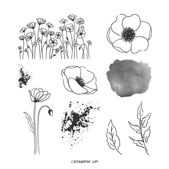 Stampin Up Painted Poppies stamp set. Shop for Stampin Up products with Sara Levin at theartfulinker.com