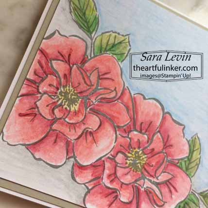 Stampin Up Watercolor To A Wild Rose Card, coloring detail. Shop for Stampin Up with Sara levin at theartfulinker.com