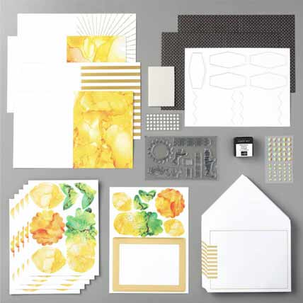 Stampin Up June 2020 Paper Pumpkin Box of Sunshine kit contents Shop for Stampin Up with Sara Levin at theartfulinker.com
