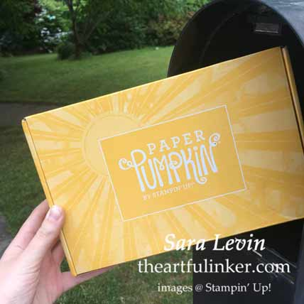 Stampin Up June 2020 Paper Pumpkin has arrived! Shop for Stampin Up with Sara Levin theartfulinker.com