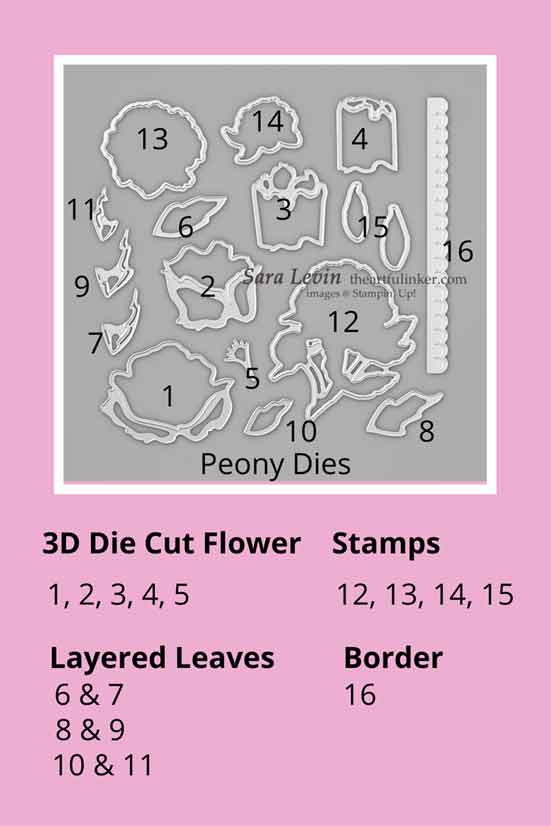 Stampin Up Peony Dies Chart Shop for Stampin Up with Sara Levin at theartfulinker.com