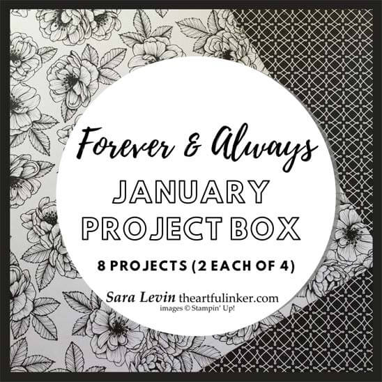 Forever and Always January Project Box Stampin Up Online class from theartfulinker.com