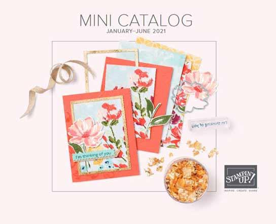 Stampin Up January to June 2021 Mini Catalog