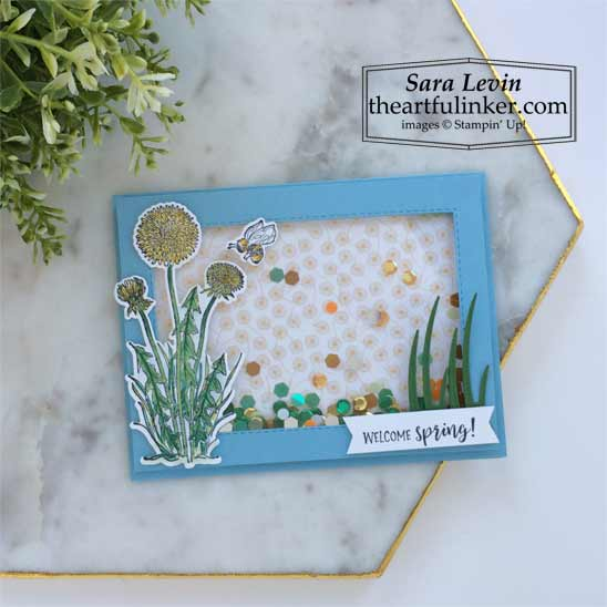 Garden Wishes shaker card with Dandy Wishes designer paper Shop for Stampin Up with Sara Levin theartfulinker.com