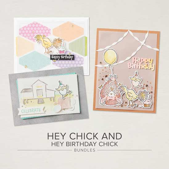Hey Chick and Hey Birthday Chick Bundles from Stampin Up Shop with Sara Levin at theartfulinker.com