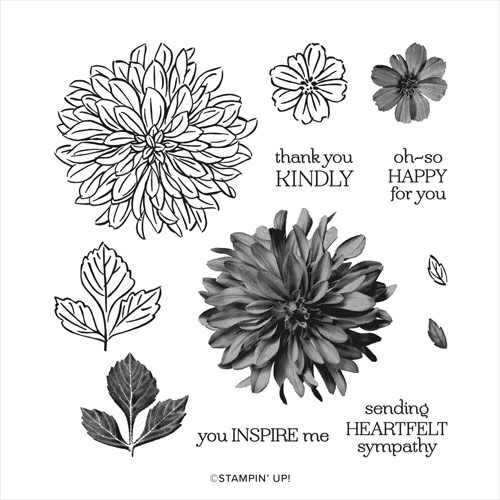 Delicate Dahlias Saleabration stamp set SHOP for Stampin Up with Sara Levin at theartfulinker.com