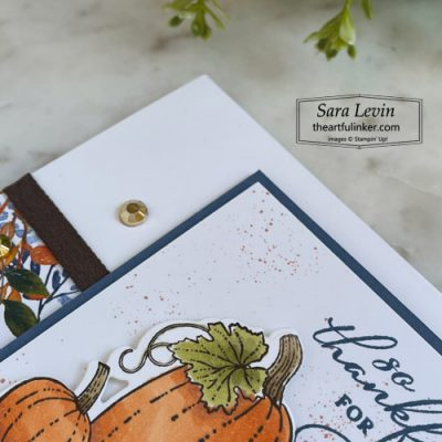 Pretty Pumpkins trio of Thank You cards casual stamping thank you with Beauty of the Earth designer paper sneak peek for OSAT Blog Hop SHOP for Stampin Up with Sara Levin theartfulinker.com